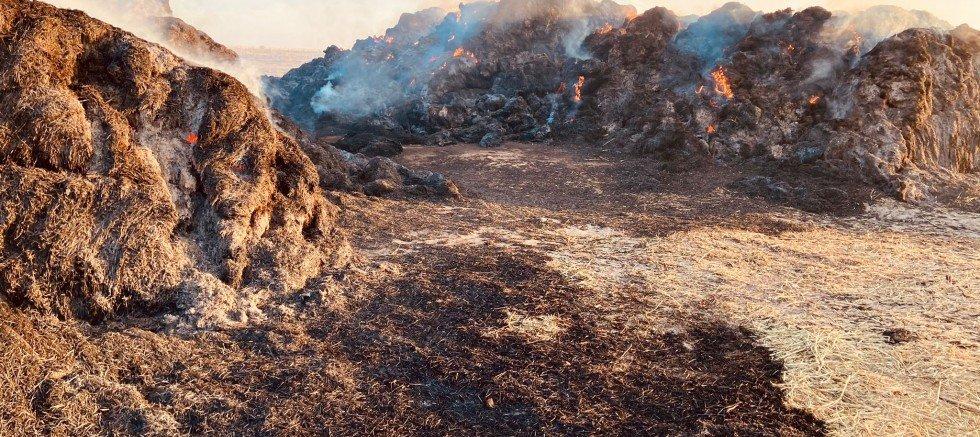 Böget'te Balya Yangını, Zarar: 300 Bin TL