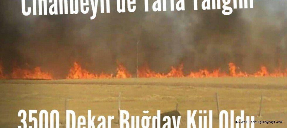 Cihanbeyli de Tarla Yangını 3500 Dekar Buğday Kül Oldu